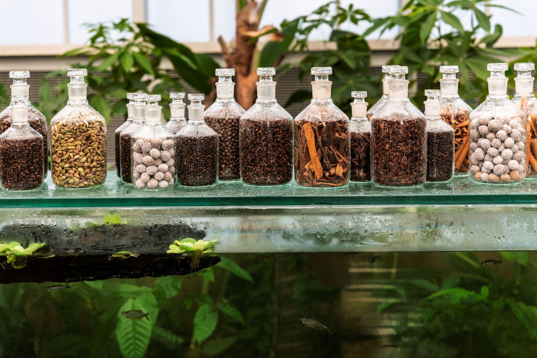 Babylonstoren Spice Room