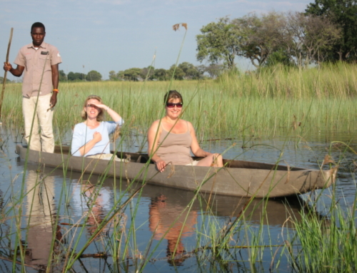 #traveldeeper with Footsteps in Africa, Botswana
