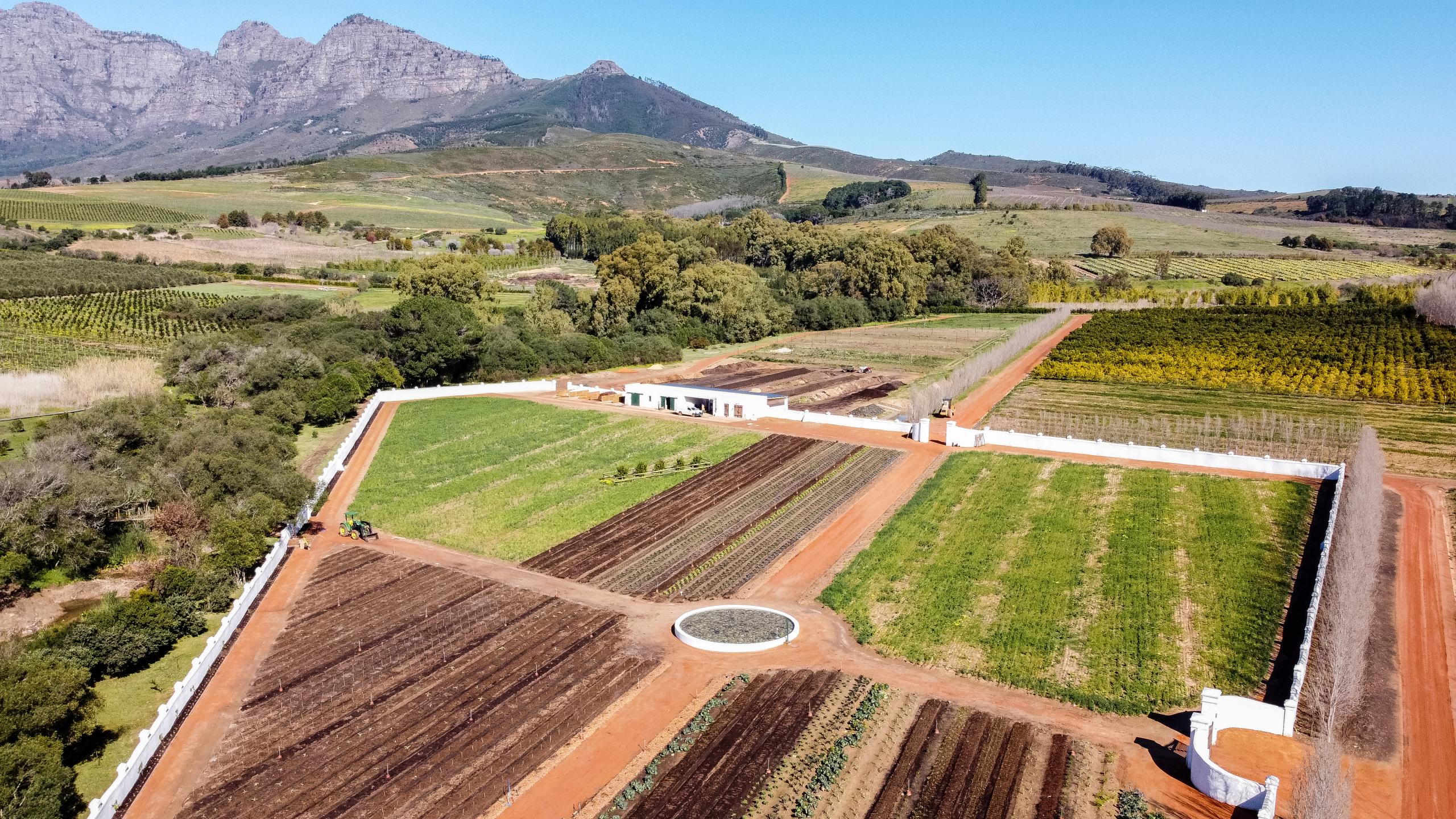 The new Kitchen Garden at Babylonstoren, Cape Winelands, South Africa