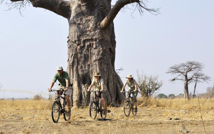 Remote Africa Safaris, Zambia