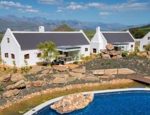 The latest video showcasing the Fynbos at Babylonstoren